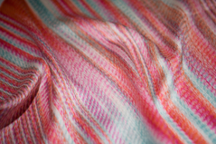 Paradisier royal, revêtement de coussin décoratif Chaine et trame en soie, technique de l'Ikat
